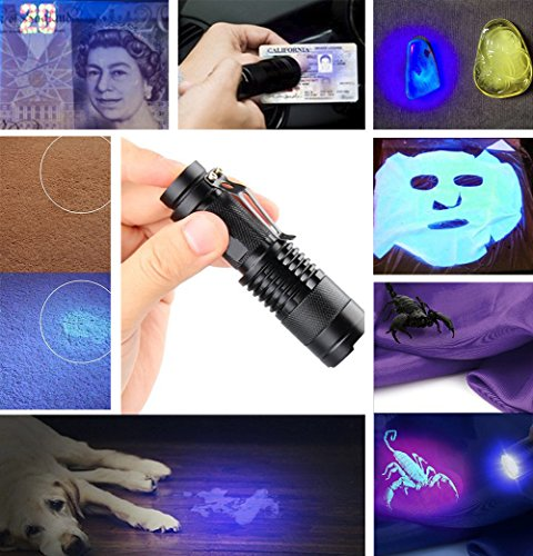 UV Torch,Black Light Torches Small Hand Held Ultraviolet 395nm LED Flashlight,Pet Dogs & Cats Urine Detector, UV Lamp for Fluorescent Agent Inspection,1 x AA Battery Included 5