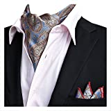 YCHENG Hombre Bufanda Jacquard Ascot Paisley Corbatas Pañuelo Boda Fiesta XLJ-19