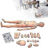 MWY Suministros de examen mdico y consumibles suministros de educacin de ciencia de enfermera mdica Maniqu de capacitacin para demostracin humana