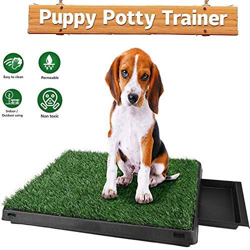 Oppikle Hundeklo Hunde Toilette Echtem Rasen Welpentoilette Trainingsunterlage für Kleine Hunde Grosse Hunde ältere Hunde Indoor Tier WC (Grün-Typ2)