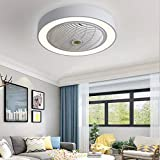 Jinweite Ceiling Fan with Light, 22 inches LED Remote Control Fully Dimmable Lighting Modes Invisible Acrylic Blades Metal Shell Semi Flush Mount Low Profile Fan,White