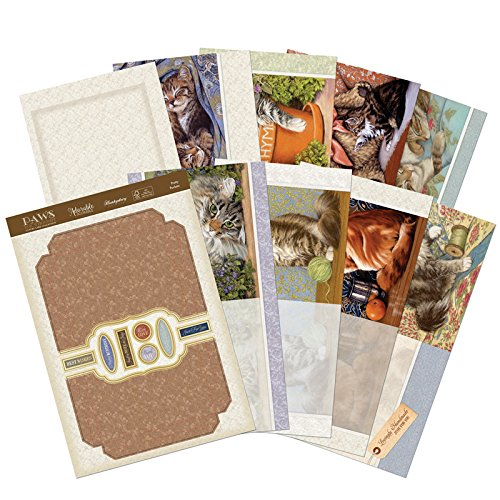 Hunkydory Crafts Paws for Thought Notelet Set Specialty Card Kit -- THOUGHT105