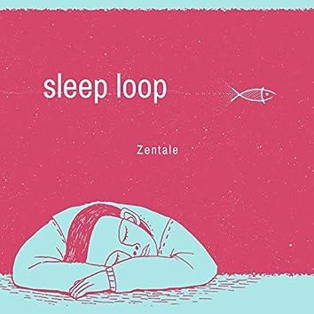 Sleep Loop