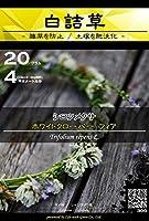 白詰草 種子 ホワイトクローバー フィア 20g(約4平方メートル分) (仕様 : 種子袋) [Life with Green]