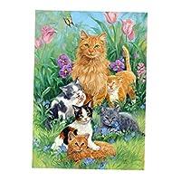 フルダイヤモンドアート 5D カラービーズストーン絵画 漫画 動物 インテリア 装飾 全4種 - 猫