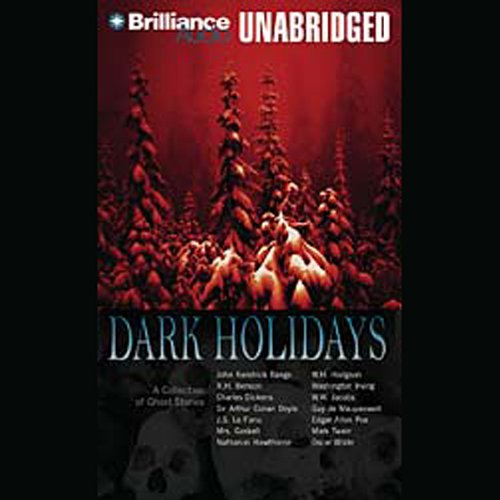 Dark Holidays audiobook cover art