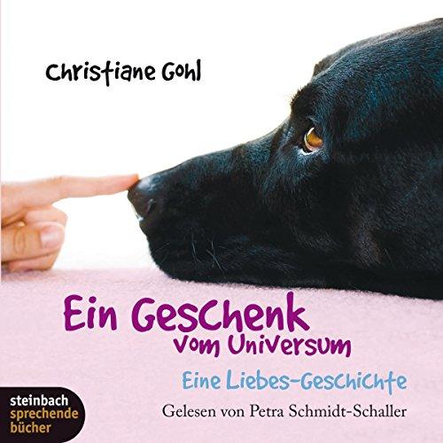 Ein Geschenk vom Universum: Eine Liebes-Geschichte Titelbild