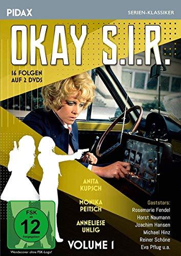 Okay S.I.R., Vol. 1 / 16 Folgen der beliebten Krimi-Serie (Pidax Serien-Klassiker) [2 DVDs]