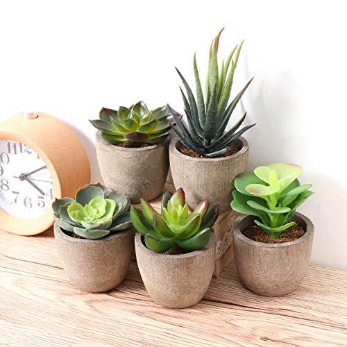 Yardwe 5 Stücke Künstliche Sukkulenten kunstpflanze mit Töpfen Tischdeko Hausgarten Deko - 3