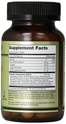 Maxi Health Active Pro-10 - Chewable Probiotic - Healthy Digestive Flora - 60 Chewies - Kosher