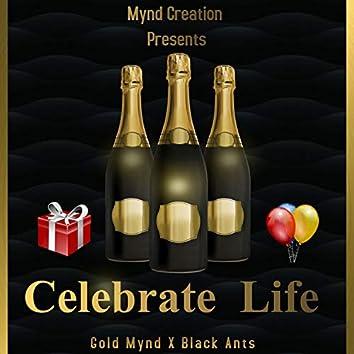 Celebrate Life (feat. Black Ants)