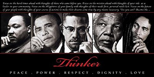 Laminated The Thinker II Art Print Poster 36x18 King Obama Malcom X Mandela Marley