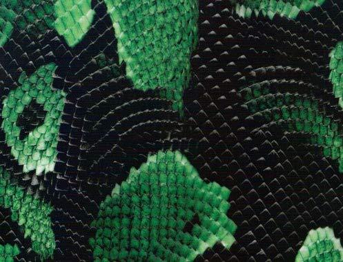 MST-DESIGN Wassertransferdruck Folie I Starter Set Klein I WTD Folie + Dippdivator/Aktivator + Zubehör I 4 Meter mit 50 cm Breite I Schlange Snake I CD 90-1