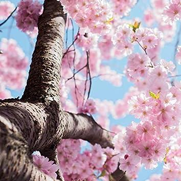 Tree of Life Songs