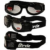 Birdz Eyewear Kite Motorcycle Goggles 2.0X Bifocal Lens (Black...