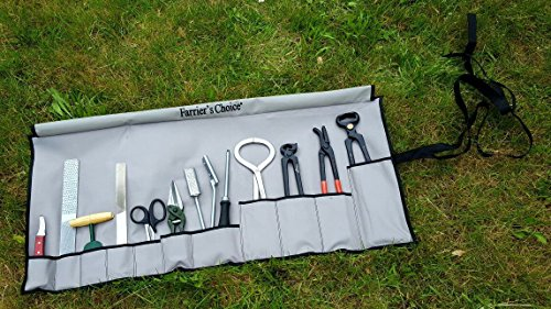 11 Piece Farrier's Tool Kit Set Horse Hoof Nippers Clincher Tester Knife Rasp Chisel Shears Floats Equine Dental + Fold Up Case