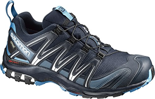 Salomon XA Pro 3D GTX, Zapatillas de Trail Running para Hombre, Azul (Navy Blazer/Hawaiian Ocean/Dawn Blue), 43 1/3 EU