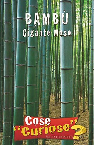 BAMBU\' Gigante Moso (Phyllostachys edulis) - SEMI