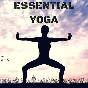 Essential Yoga: Music for Yoga Asanas, Instrumental Songs for Yoga Practice, Hatha, Kundalini