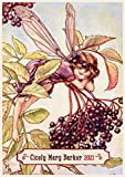 "Wall Calendar 2021 [12 pages 8""x11""] Flower Fairies by Cicely Mary Barker Vintage Books Illustration"