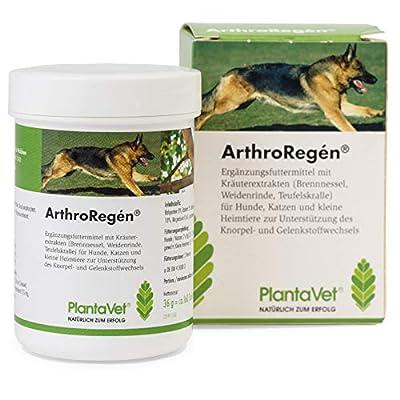 PlantaVet Arthroregen 36g
