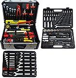 Famex Werkzeuge 722-46 juego de herramientas