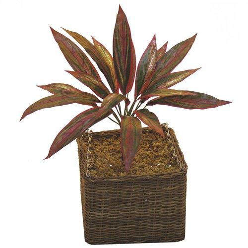 Euro Palms kunstplant, bont