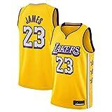 Hombres Camiseta de NBA Lakers # 23 Lebron James clásico Jersey Nueva Bordado de Malla Transpirable de Tela, Fan de Baloncesto Unisex sin Mangas del Chaleco de Deporte,L(180cm/75~85kg)