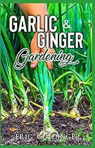 GARLIC & GINGER GARDENING: Simplified Guide To Growing & Harvesting Ginger and Garlic / Medicinal Usage & Cooking Recipes
