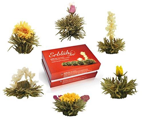 "Creano Teeblumen Mix – ""ErblühTee"" in edler Geschenkbox zum Probieren | Weißtee (6 verschiedene Sorten Teerosen) Geschenk zum Muttertag"