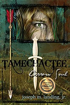Tamechactee: Arrow Soul by [Joseph M. Landing Jr.]
