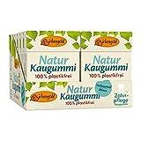 Natur Kaugummi Teebaumöl-Minze plastikfrei | 12 Stk.| Natürliche Kaumasse (Chicle) | Zahnpflegend (Xylit) | Zuckerfrei | Umweltfreundlich | Birkengold