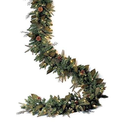Bethlehem Lighting GKI Pre-Lit PE/PVC Christmas Garland with 100 Clear Mini Lights, 6', Green River Spruce