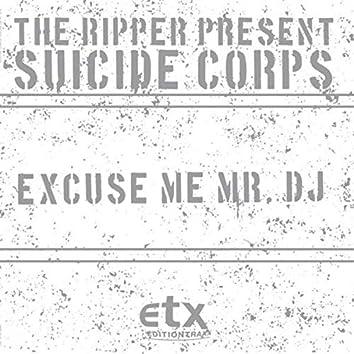 Excuse Me Mr. DJ