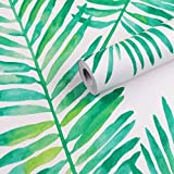 Vinilo decorativo autoadhesivo Tropical Palm Shelf Liner Papel tapiz de papel para paredes Armarios Estantes Cómoda Cajón Mesa Puerta Muebles Etiqueta 45CMx3M