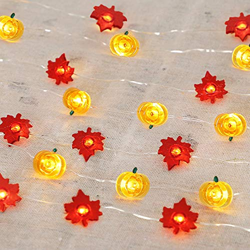 HOLICOLOR 40 LED Pumpkin String Lights Maple Fairy Lights 16.4ft Battery Operated Halloween Lights Jack-O-Lantern for Fall Halloween Thanksgiving Wedding Birthday Party Home Decoration(2 Pack)