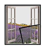DUTXIN - Malla de protecció per a finestres i gats, autoadhesiva, transparent, *mosquitera per a finestra, es pot tallar a mesura