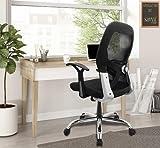 SAVYA HOME Apollo Medium Office Chair