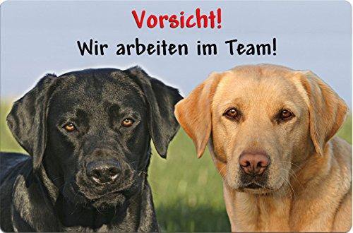 +++ LABRADOR Retriever - Metall WARNSCHILD Schild Hundeschild Sign - LAB 23 T16 BLO S
