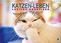 Katzen-Leben: Lustiger Haustiger (Wandkalender 2021 DIN A4 quer): Katzen: Stubentiger in aller Welt (Monatskalender, 14 Seiten )