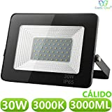 Foco LED exterior Floodlight 30W GNETIC GLASS Proyector Negro Impermeable IP65 3000LM Color Luz Blanco Cálido 3000K Angulo 120º 145x200 mm 30000h Equivalente a 270W [Eficiencia energética A++] Pack x1