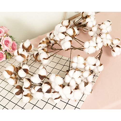 Yehapp Cadena de algodón Artificial Cadena de Guirnalda de algodón cuelga 55 Cabezas de Curso de Deco para el florero Sala de Aniversario de Boda Decoración de café