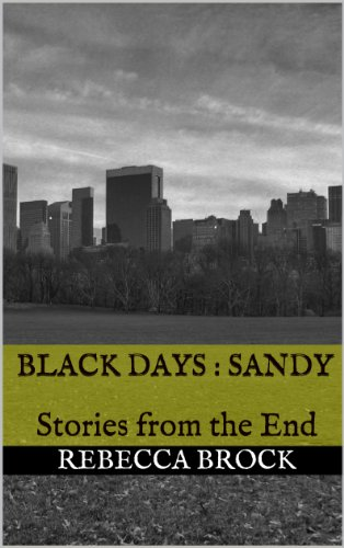 Black Days : Sandy: Stories from the End (Black Days : Stories from the End Book 1) (English Edition)