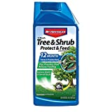 BioAdvanced 701901 12-Month Shrub Protect & Feed Insect Killer and Tree Food, 32-Ounce, Concentrate
