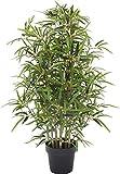 Bamboo Bambu - Albero Artificiale con Tronchi Veri da Arredo - Idoneo Uso Esterno Resistente ai Raggi U.V. Certificato TUV - Alto 100 cm