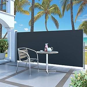 Tidyard Toldo Lateral para Proteger Lateral Separador Retráctil Biombo Separador para Jardín o Terraza con Función de Retroceso Automático,140x300cm Negro