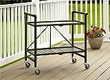 Cosco Indoor/Outdoor Serving Cart, Folding, Brown...
