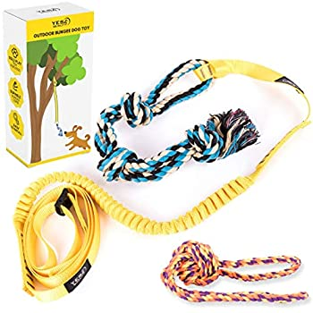 Outdoor Hanging Bungee Dog Toy - Interactive Tether Tug Toy for Pitbull & Small to Large Dogs - Durable Tugger for Safe & Fun Solo Play - Ideal for Exercise & Tug of War - 2 Strong Rope Toys Included