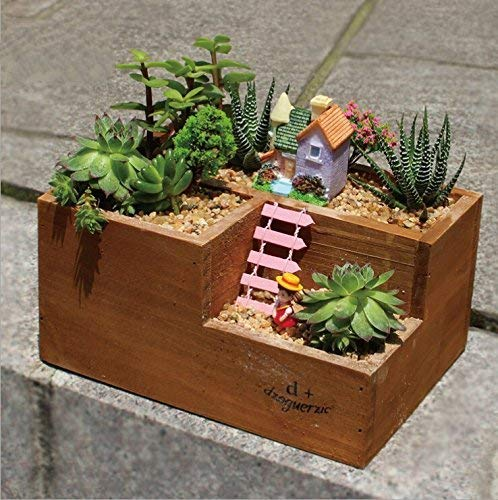 Small succulent planter box