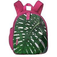 イングリーンリーフ 迷子防止リュック バックパック 子供用 子ども用バッグ ランドセル 高品質 レッスンバッグ 旅行 おでかけ 学用品 子供の贈り物